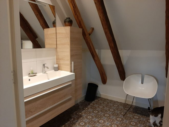 Badkamer van de gastenkamer